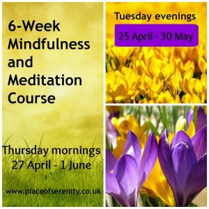 Mindfulness and Meditation Course