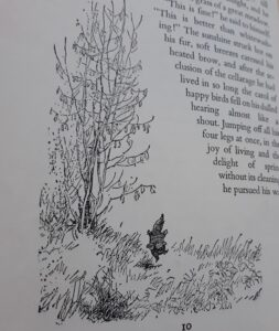 Place of Serenity | From Wind in the Willows