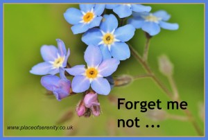 How can I be less forgetful and more focussed