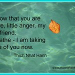 Mindfulness and anger