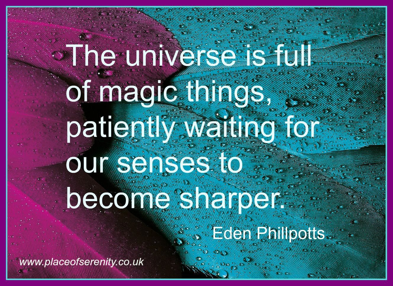 Image result for eckhart tolle mindfulness clarity quote pics