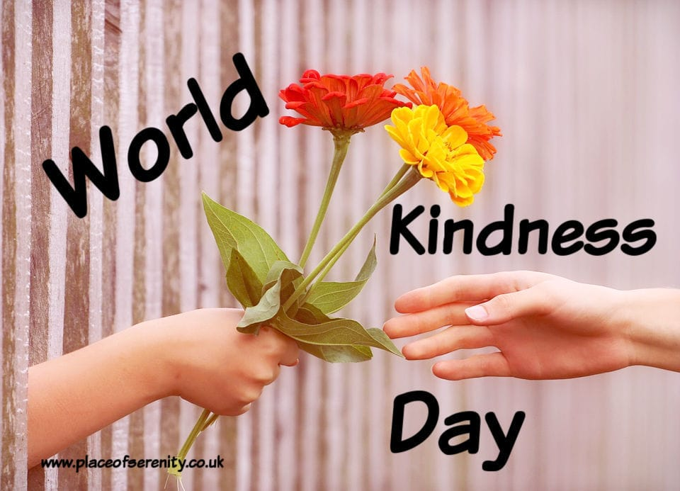 Place of Serenity | World kindness day