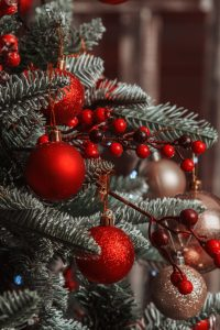Place of Serenity | Mindful Christmas