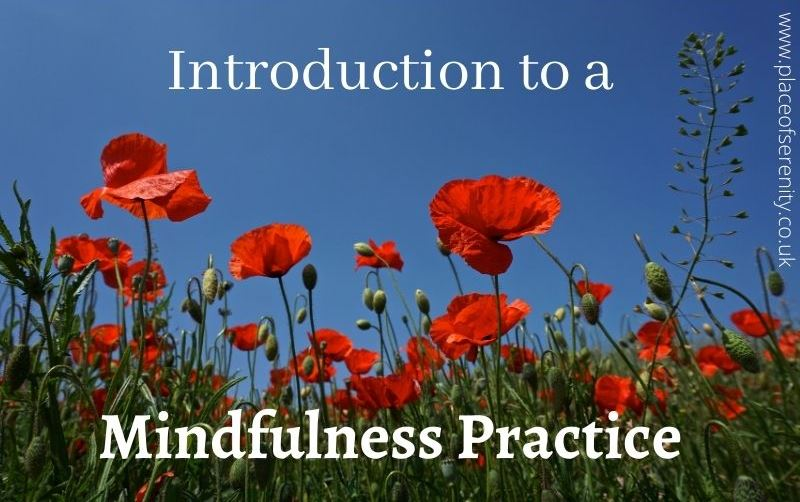 Place of Serenity   Mindfulness Practice