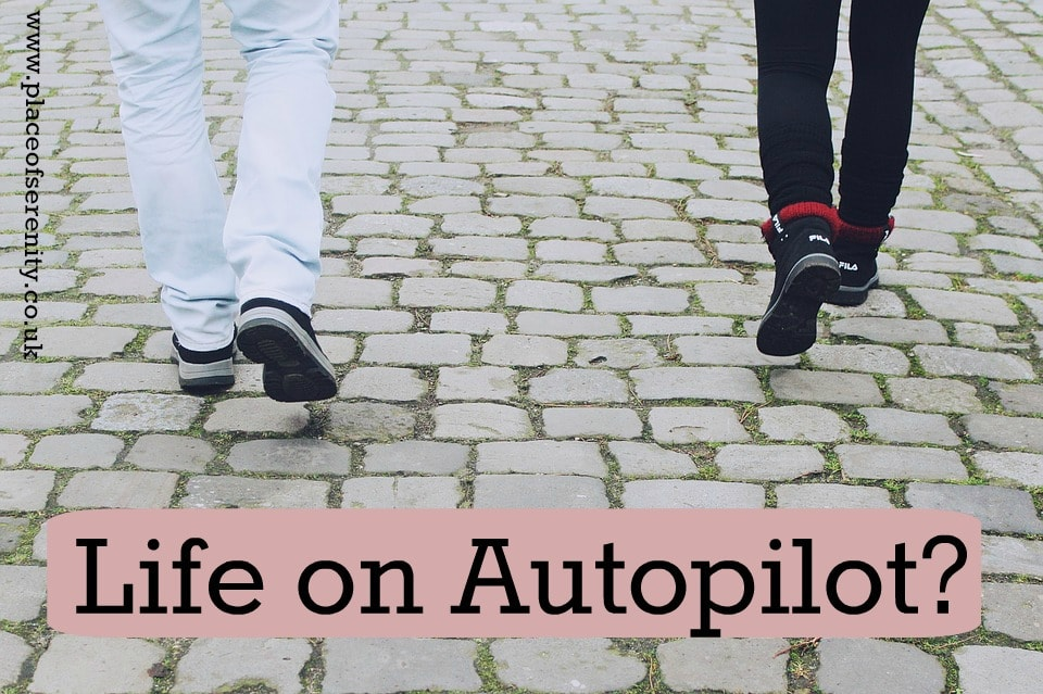 Thoughts on autopilot