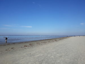 Place of Serenity | West Wittering October blessings