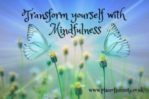 Place of Serenity | transform yourself with mindfulness