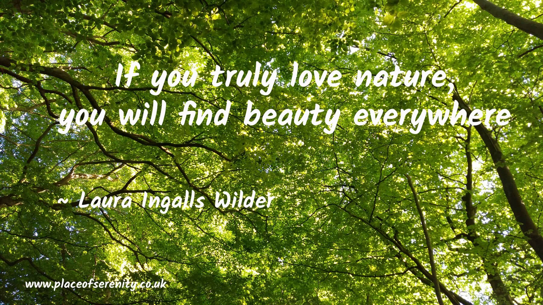 Boost your Wellbeing with Nature | Place of Serenity | East Hampshire