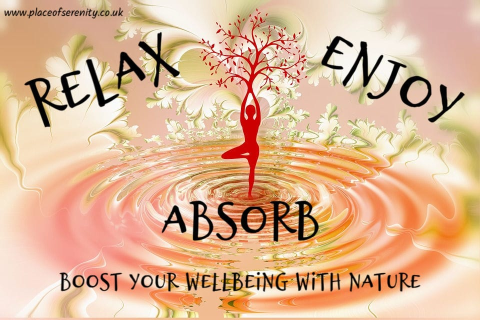 Place of Serenity | wellbeing with nature