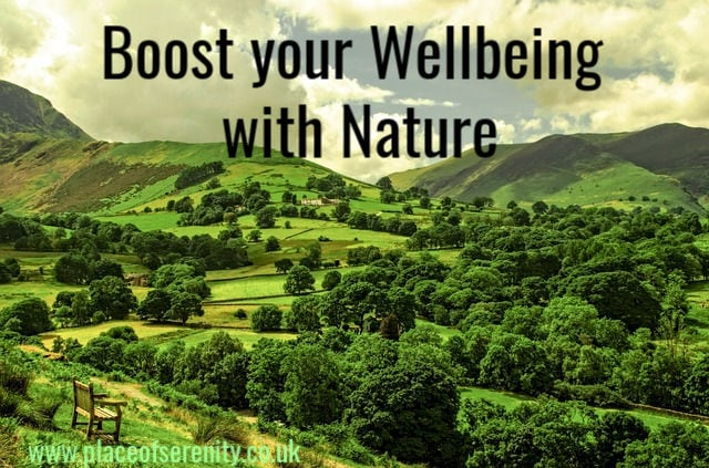 Place of Serenity | wellbeing in nature