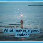 Place of Serenity | A good leader inspires