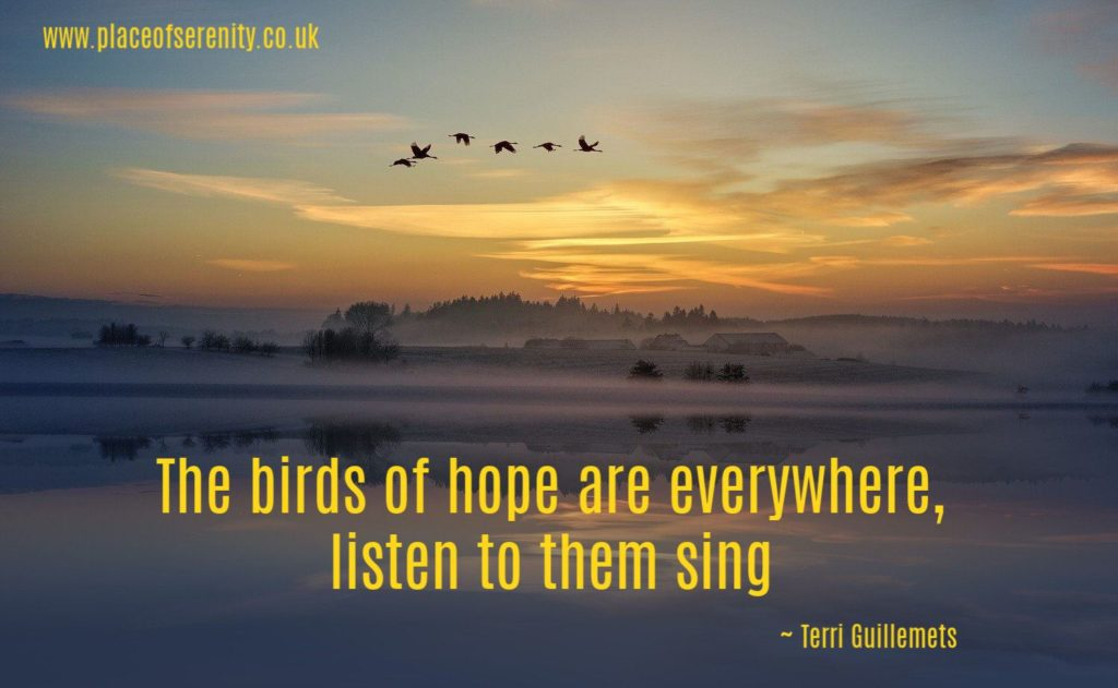 Place of Serenity | singing birds