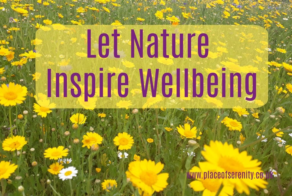 Place of Serenity | Let Nature Inspire Wellbeing