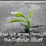 Place of Serenity | Grow through the difficult stuff