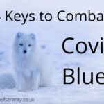 Place of Serenity | 4 Keys to Combat Covid Blues