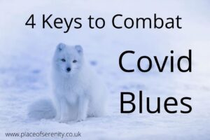 Place of Serenity | Covid Pandemic and Mindfulness 4 Keys to Combat Covid Blues